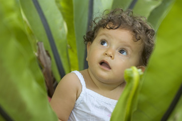 toddler in plant
