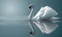 "Постер, картина, фотообои ""swan reflections"""