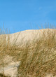 dunes on the island of sylt, germany