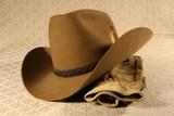 cowboy hat & gloves 2 poster