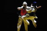 combat  de taekwondo