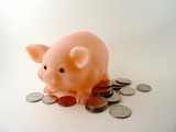 piggy bank with money poster