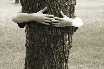 hands clasping the tree