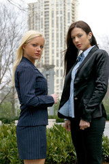 business woman - businesswoman