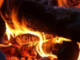 feu de bois poster