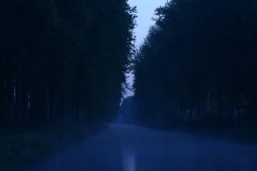 le route humide ...