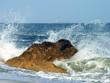 surf at coast
