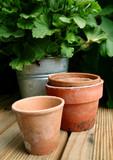 pots et plantes poster