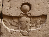 carved  scarab poster