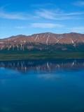 lake lama poster