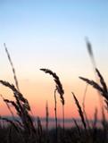 sunset. silence. poster