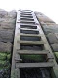 pier ladder poster