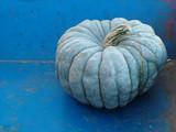 blue gray pumpkin poster