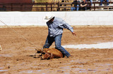 rodeo action poster