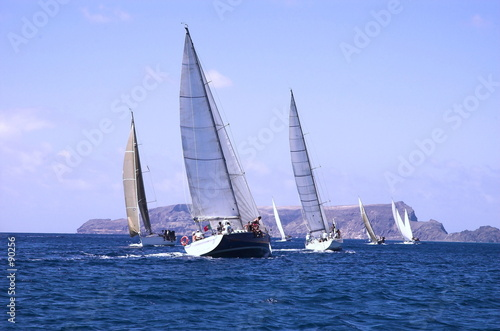 canvas print picture sailing in competition