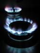 gas rings 2