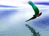neon eagle poster