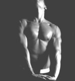 physique chest and arms poster
