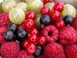 Quadro mixed berries