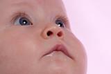 gazing baby poster