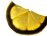 lemon veins poster