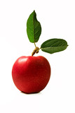 fresh red apple with leaves poster