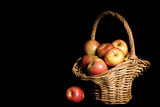 apple harvest poster