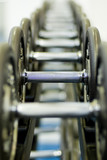 row of dumbbells 1 poster