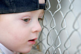 cute young boy looking through fence poster