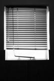 shielded window poster