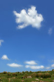 a strange cloud above a hillside. poster