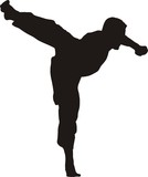 kicking karate fighter silhouette poster