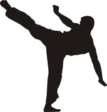 karate fighter kicking #2 silhouette poster
