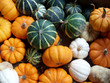 green, yellow and white pumpkins