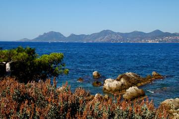 paysage côtier, côte d'azur, cannes