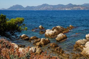 paysage côtier, cannes, côte d'azur