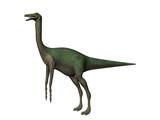 dinosaur gallimimus poster