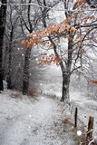 danish winter poster