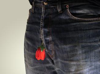 rose in my pants