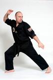 karate pose poster