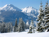alpine snow scene