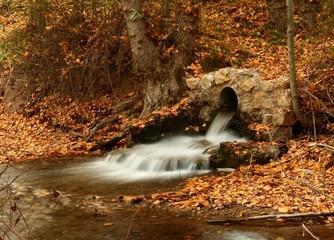 afluente del guadalaviar en otoño