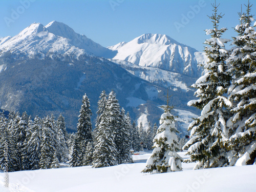 alpine snow scene