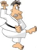 karate kick poster