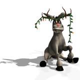 Fototapety christmas donkey
