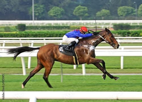 horse racing - 145045