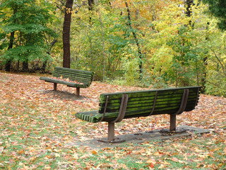 autumn and park benches