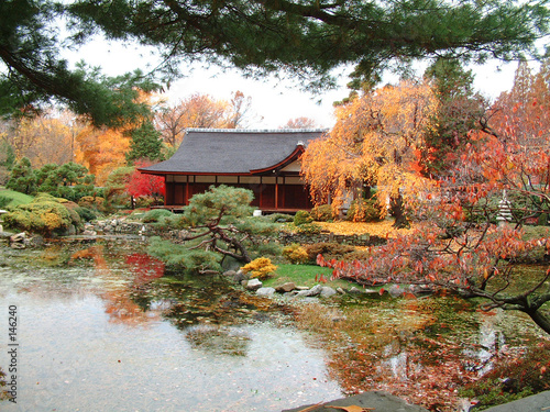 japanese tea house in the fall