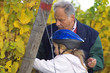 tasting the grapes with grandfather