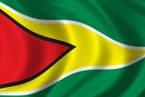 flag of guyana poster